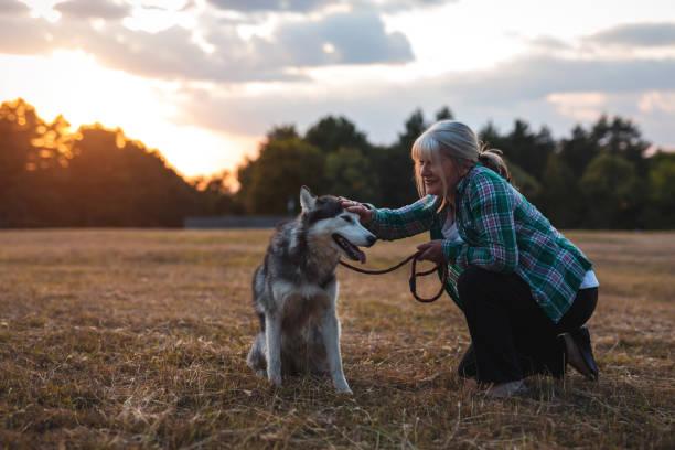 This dog make her happy picture id1177210535?b=1&k=6&m=1177210535&s=612x612&w=0&h=yd9l2id2nm4pxupjg2vqz8rxw001spbwg vwaozeppq=
