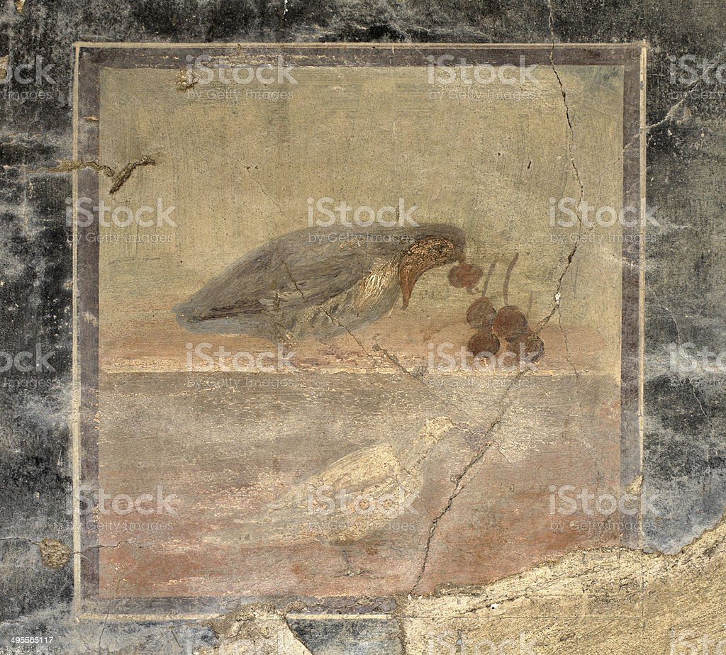 Grey partridge bird fresco in Herculaneum Italy royalty-free stock photo