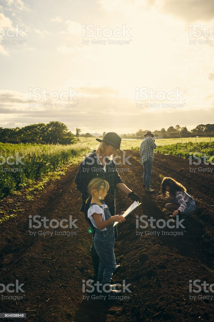 This farm will eventually be hers stock photo