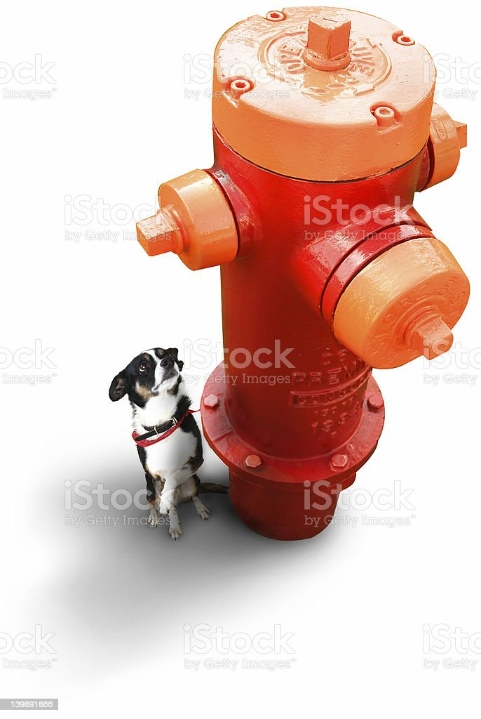 This fire plug is too big!! stock photo