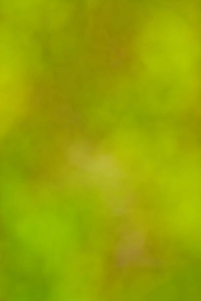 Green Out of Focus Background stock photo