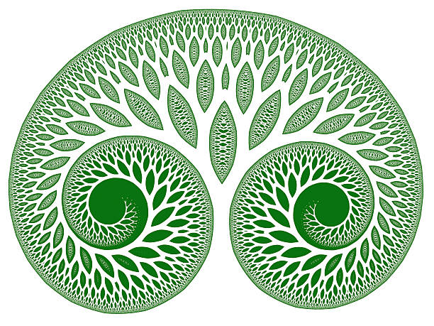 green leafy tree of life symbol fractal image - whiteway fractal stock photos and pictures