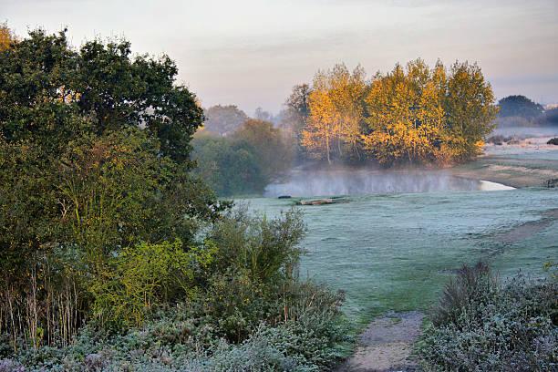 frosty autumnal landscape in richmond park - richmond park stock photos and pictures