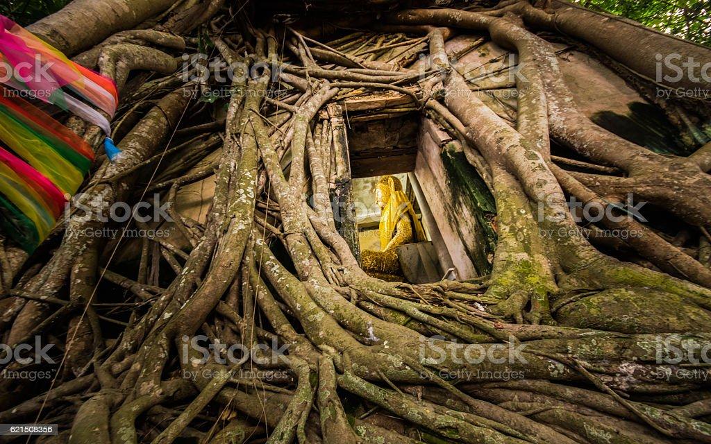 Questo è Tailandia foto stock royalty-free