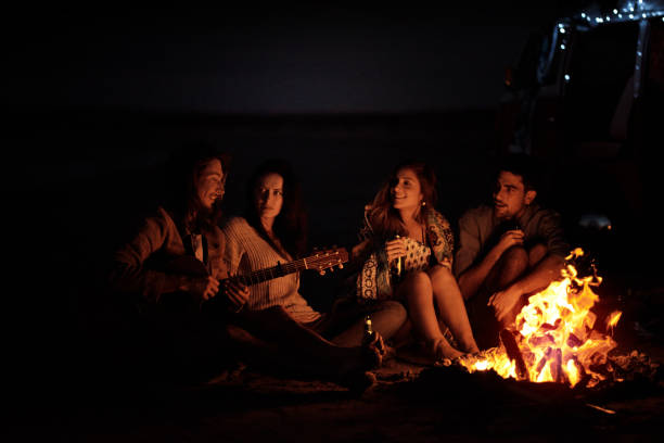 This is the feeling of freedom Shot of a group of friends sitting around a bonfire on the beach at night bonfire stock pictures, royalty-free photos & images