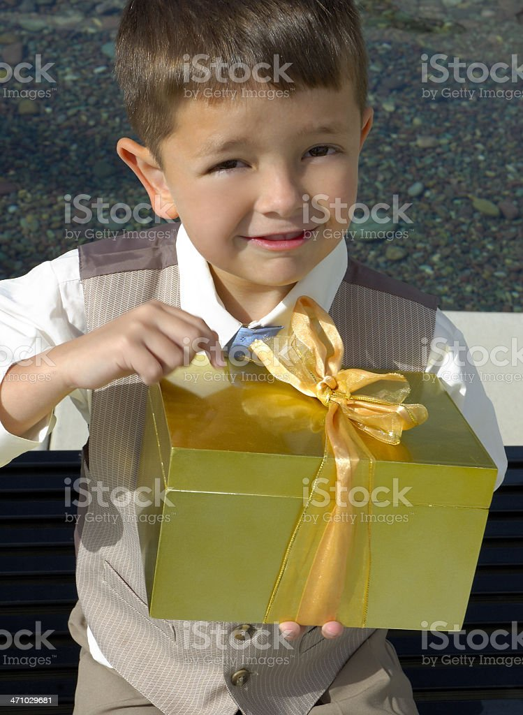 This is the Perfect Present! royalty-free stock photo