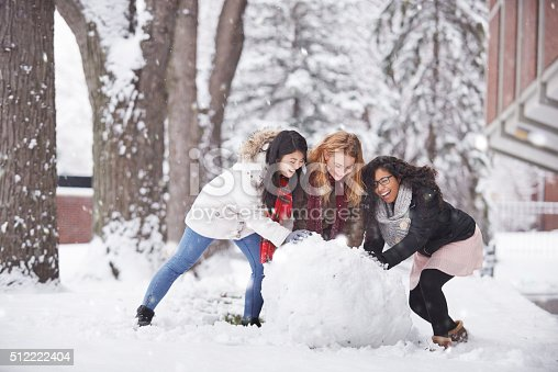 istock This is what winter is all about 512222404