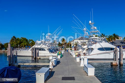 This Marina has an adjacent restaurant, bar, pier, mooring slips, beautiful Views and Warm Winters - What more can you ask?