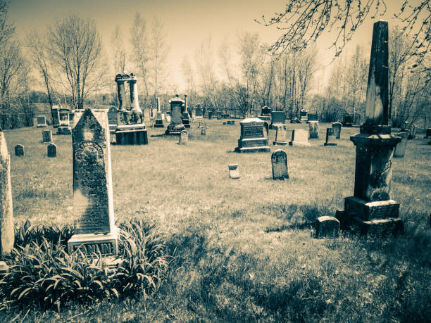 This place is an old cemetery. stock photo