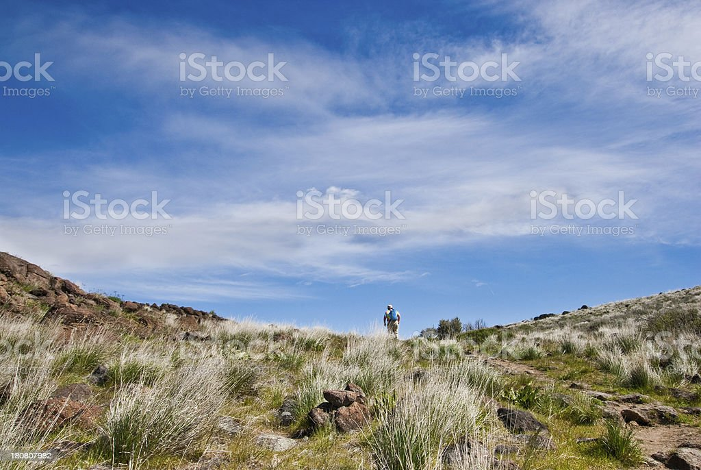 Hiker Reaches the Top of Cowiche Ridge This senior female hiker reaches the top of a ridge on the Cowiche Canyon Trail. Cowiche Canyon is near Yakima, Washington State, USA. Active Lifestyle Stock Photo