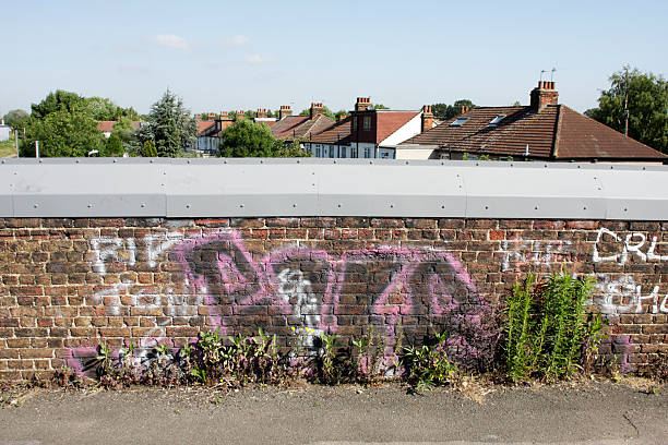 graffiti and wildflowers by a bridge over tram lines - whiteway graffiti stock photos and pictures
