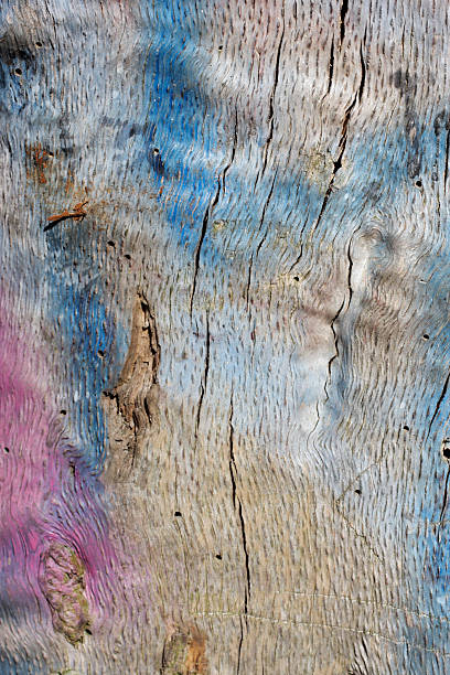 weathered wood background with grain and graffiti paint - whiteway graffiti stock photos and pictures