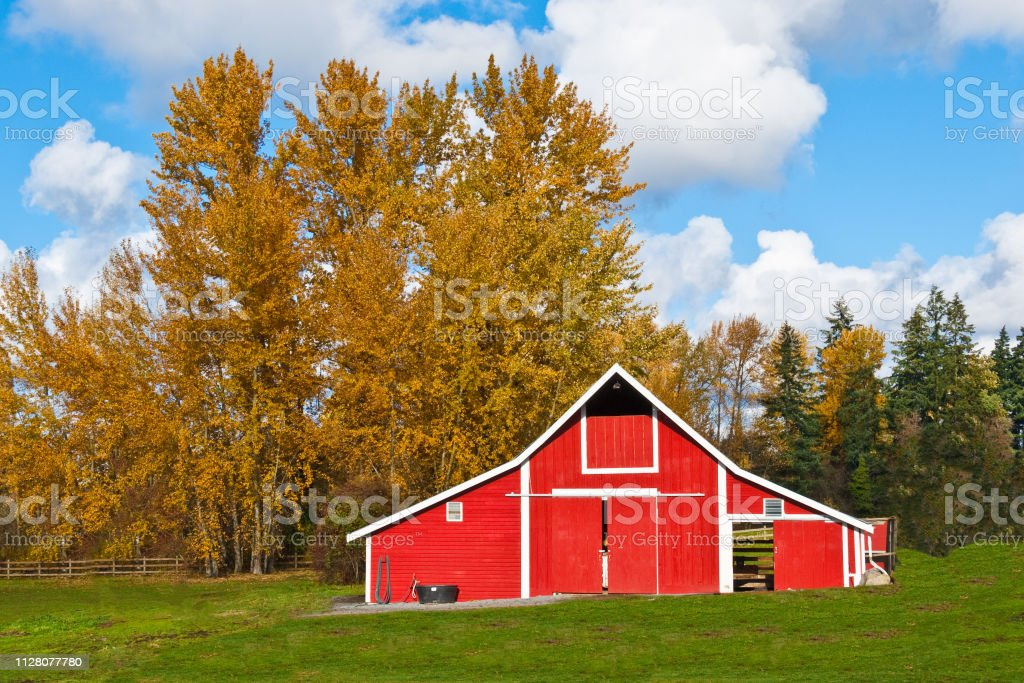 Red Barn and Fall Colors stock photo