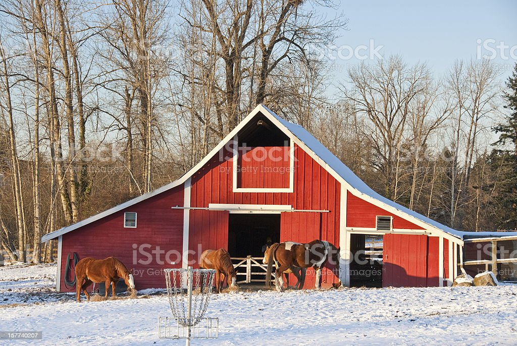 Red Barn in the Snow at Dusk stock photo