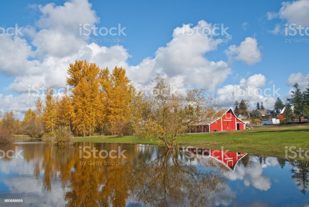 Red Barn, Fall Colors and Puffy Clouds Reflected in a Pond stock photo
