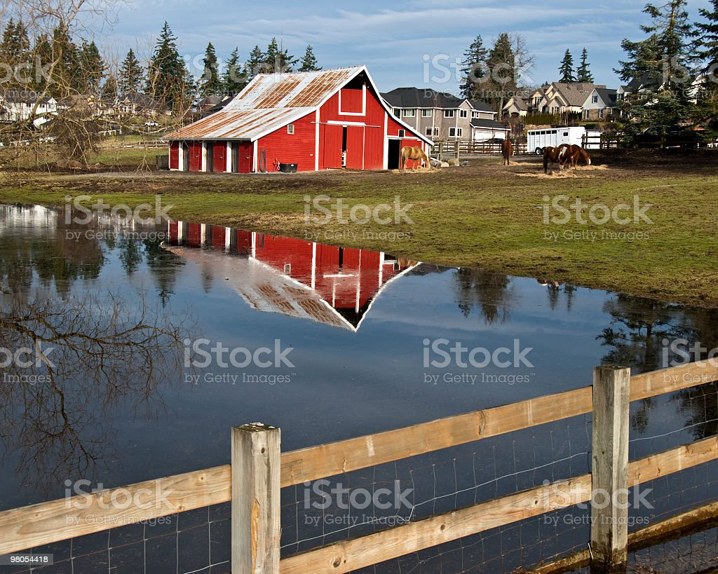 Red Barn Reflected in a Pond With Fence royalty-free stock photo