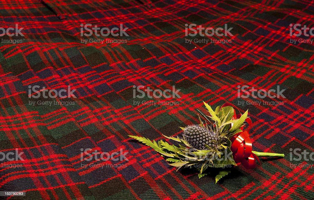 Thistle buttonhole on tartan kilt 2 stock photo