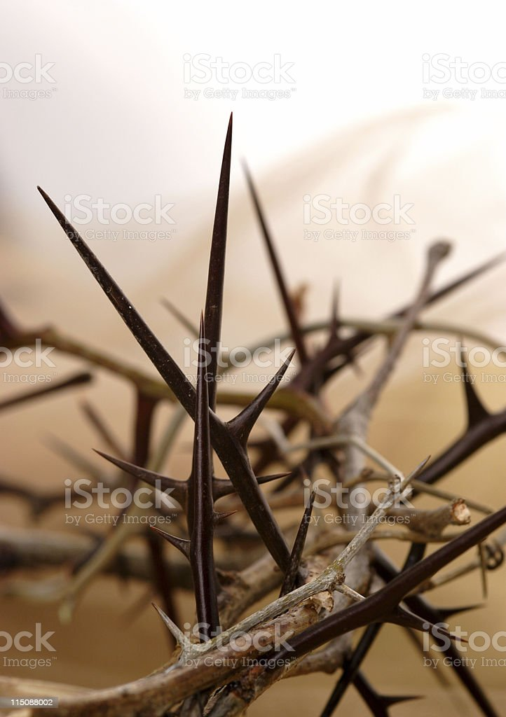thorny crown royalty-free stock photo