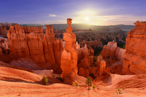 thor de hamer in bryce canyon national park in utah usa tijdens zonsopgang - bryce canyon national park stockfoto's en -beelden