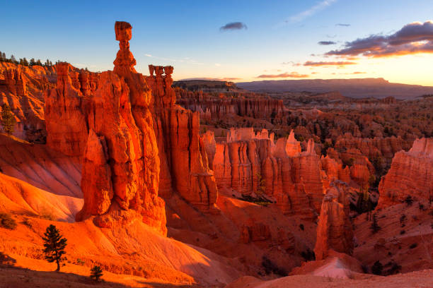 hamer van thor in bryce canyon national park in utah, verenigde staten - bryce canyon national park stockfoto's en -beelden