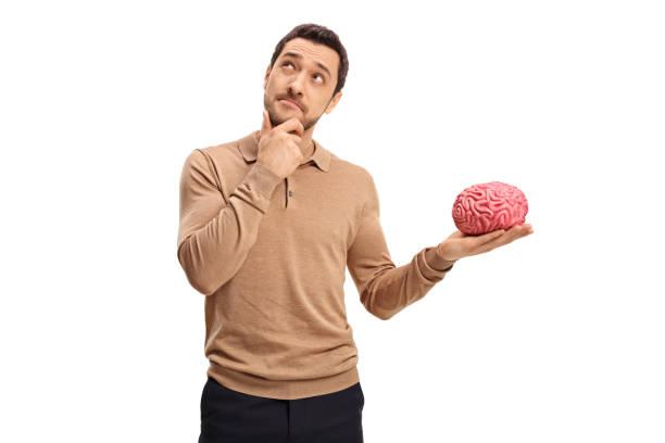 Thoughtful man holding a brain model stock photo
