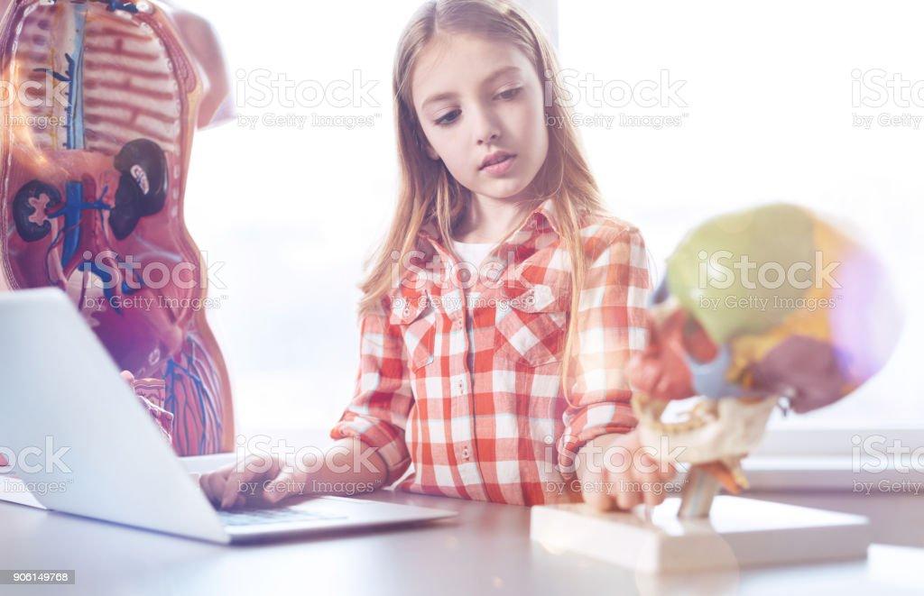 Thoughtful productive girl carefully studying anatomic model stock photo
