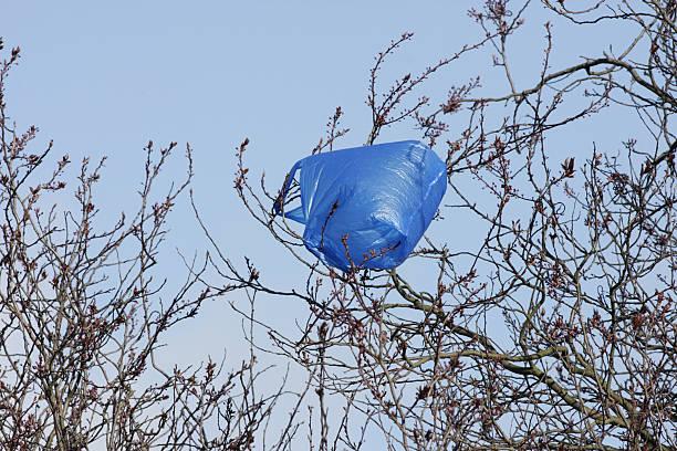 """gestell aus blauem kunststoff, """"blowing in wind - windbeutel stock-fotos und bilder"""