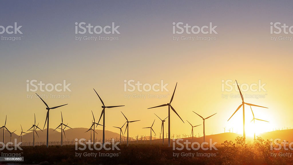 Thousands of wind turbines at sunset stock photo
