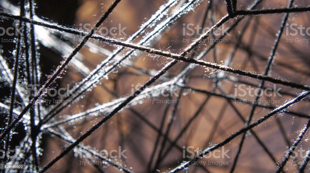 Threads in sunlight royalty-free stock photo