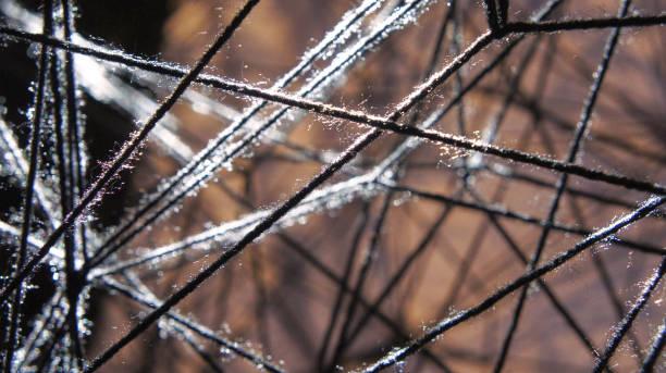 Threads in sunlight stock photo