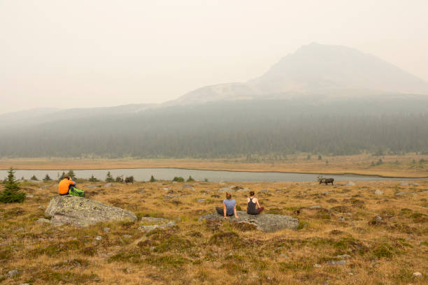 Sitting on boulders, a trio of hikers enjoy the peaceful grazing pair of woodland caribou with a nearly smoke obscured Clitheroe Peak in the background.