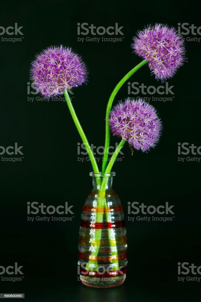 Drie Allium bloemen in een decoratieve vaas tegen zwarte achtergrond foto