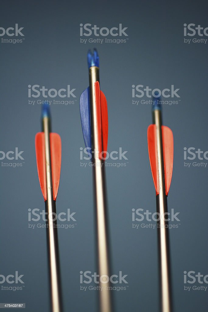 Three archery arrows with a shallow depth of field royalty-free stock photo