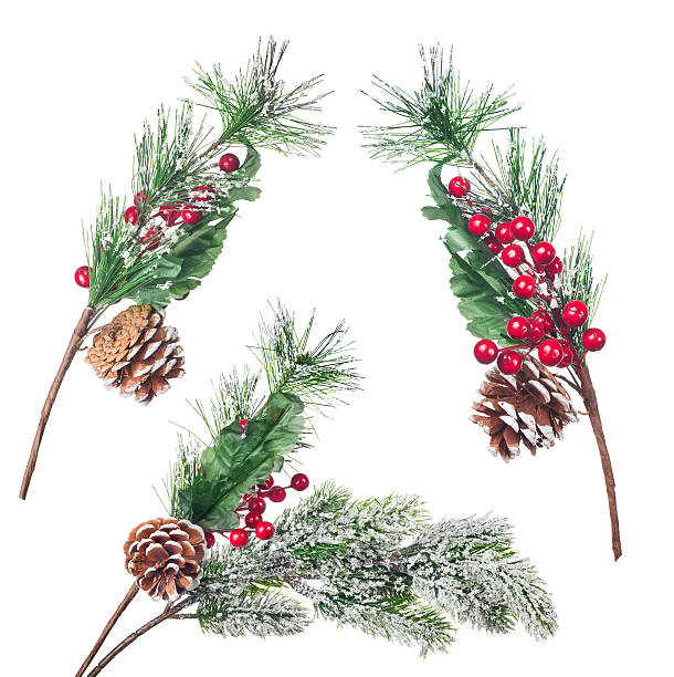 three artificial pine tree branches collection stock photo