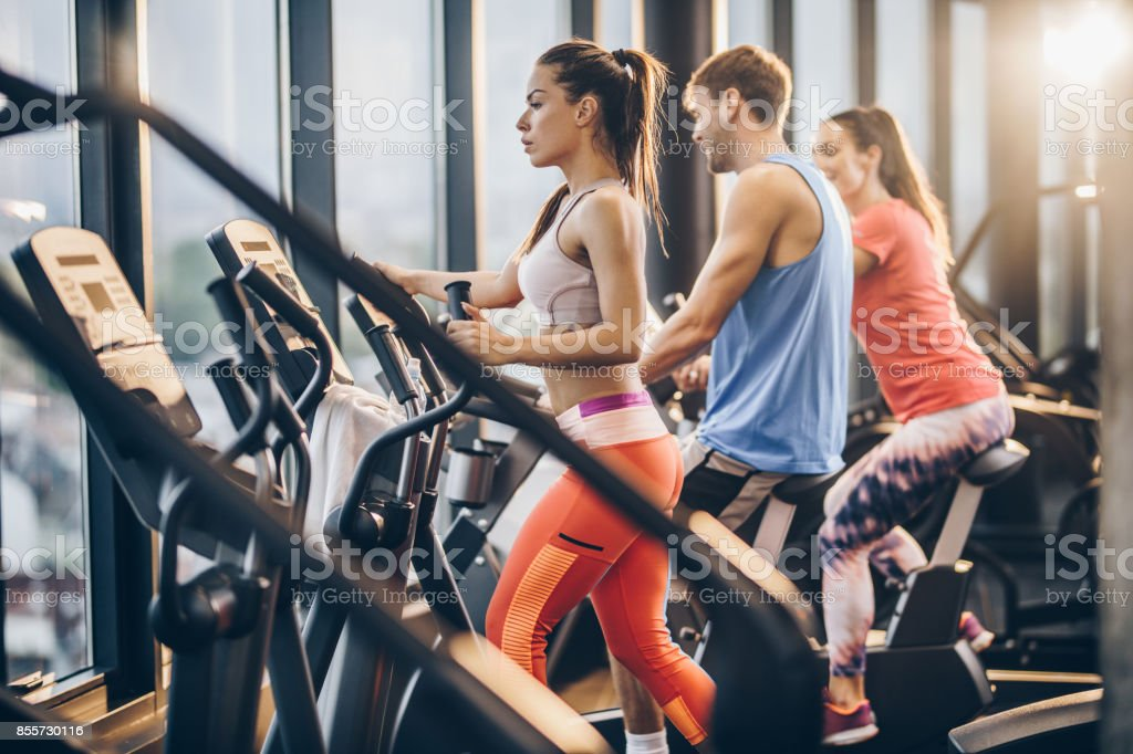 Three athletic people warming up on exercise machines in a gym. stock photo