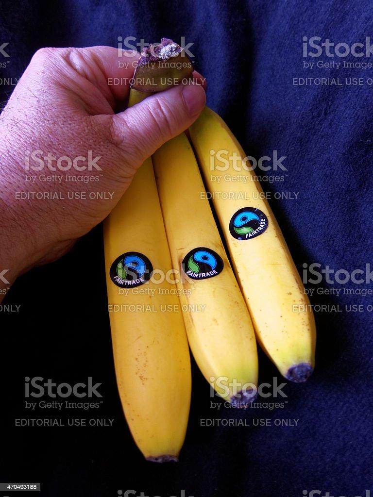 three bananas with fairtrade label stock photo