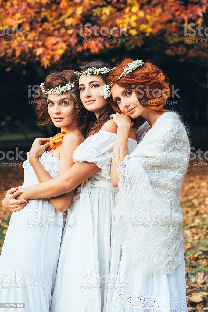 Tres hermosa novia en un fondo de bosque de otoño foto de stock libre de derechos