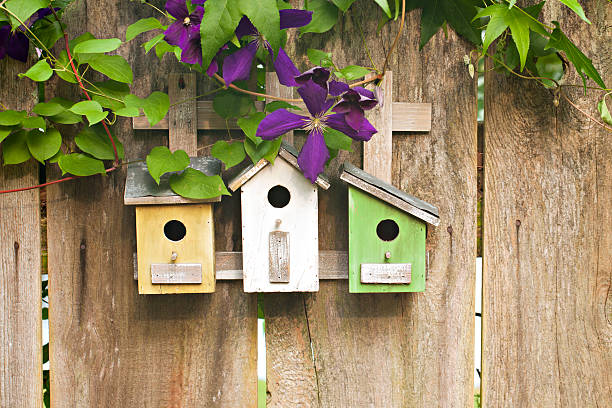 Three birdhouses on old wooden fence with flowers stock photo