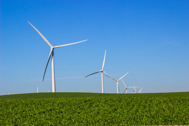 Three Bladed Energy Producing Windmills Three Bladed Energy Producing Windmills In Open Field windmill stock pictures, royalty-free photos & images