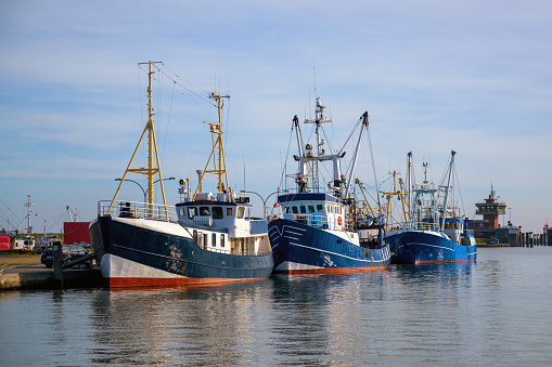 Three blue fishing boats at the quay in the port of Buesum on the North Sea in Germany against the blue sky, copy space