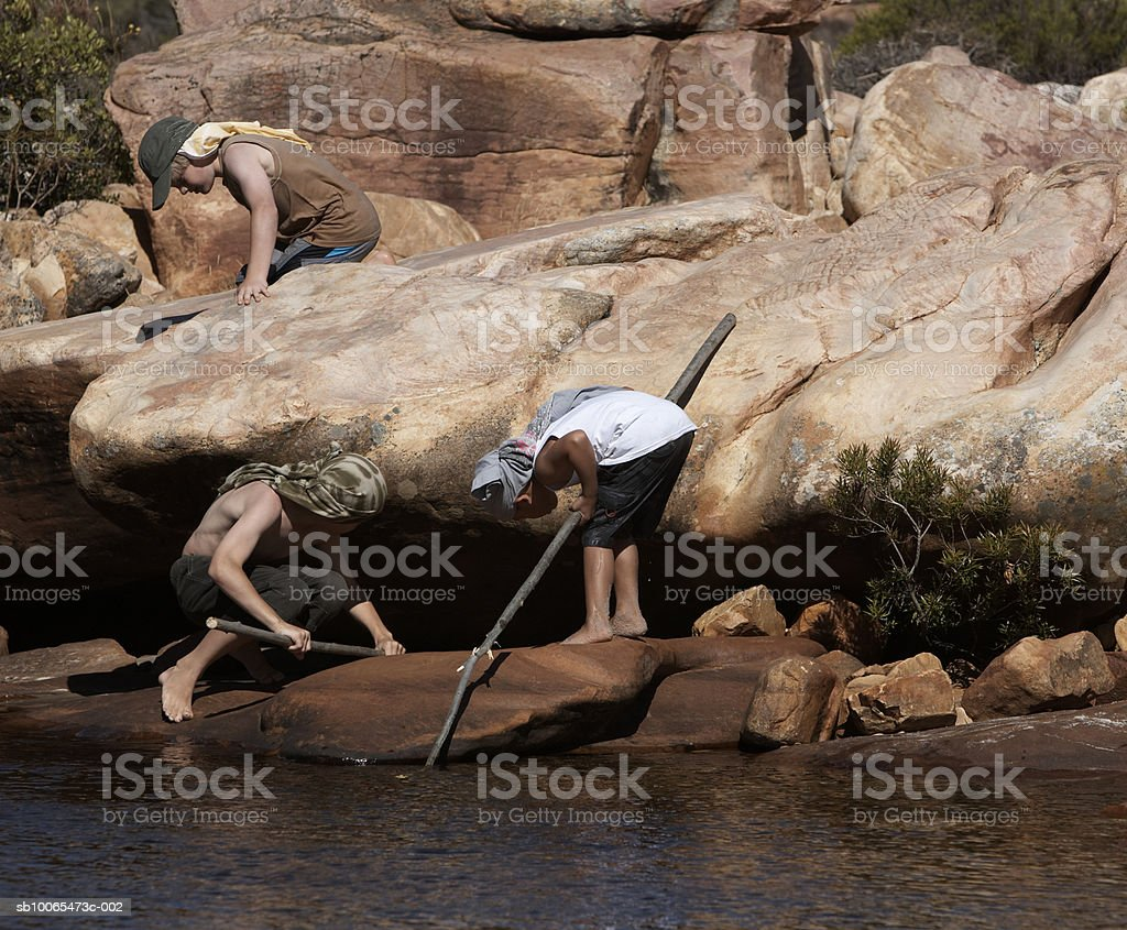 Three boys (6-13) holding poles searching under rock by stream royalty-free stock photo