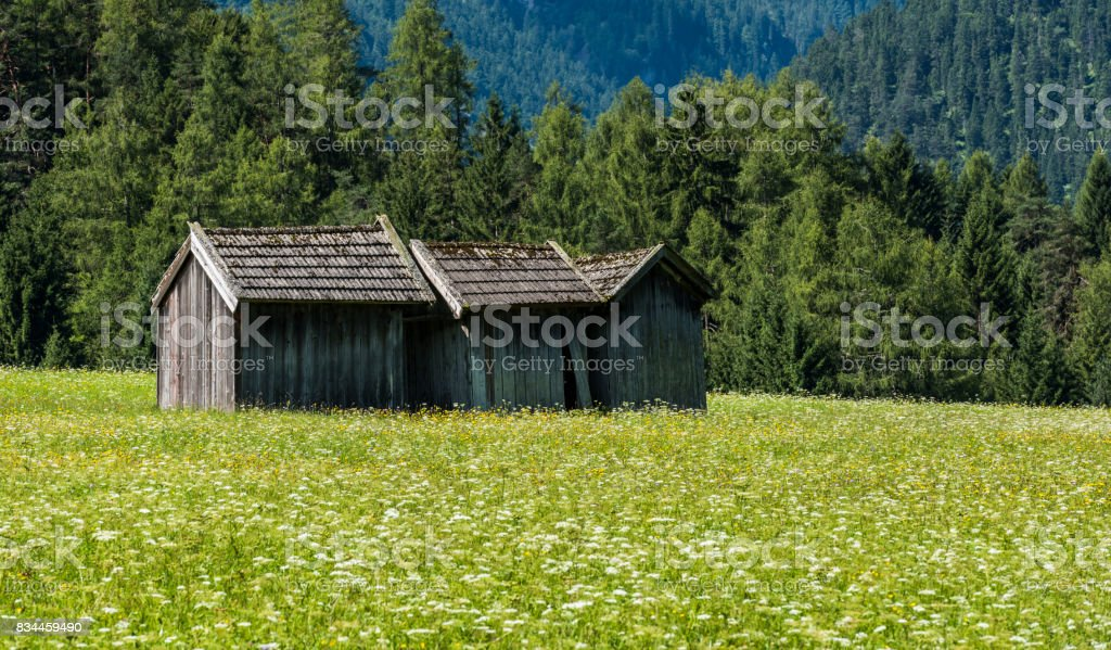 Three Cabins in Meadow Stanzach stock photo