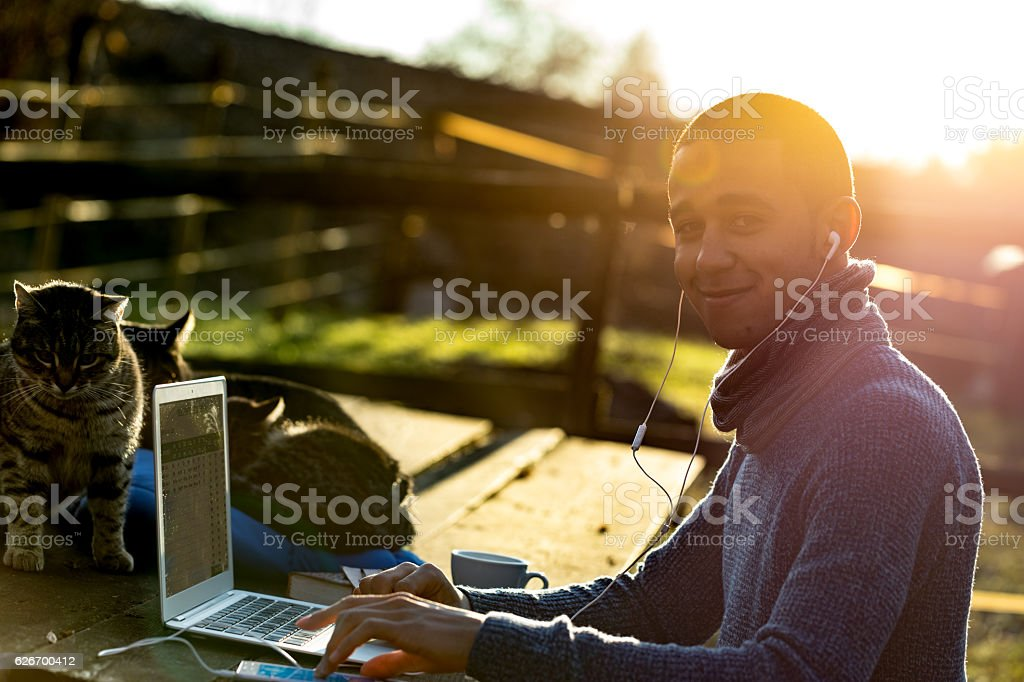 three cats working outdoors with a businessman stock photo