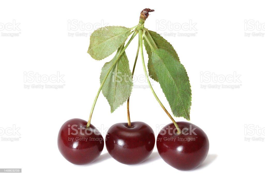 Three cherries royalty-free stock photo