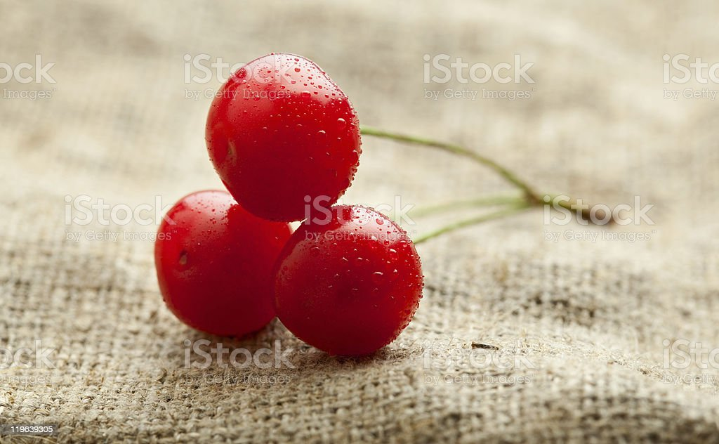 Three cherry over baging royalty-free stock photo