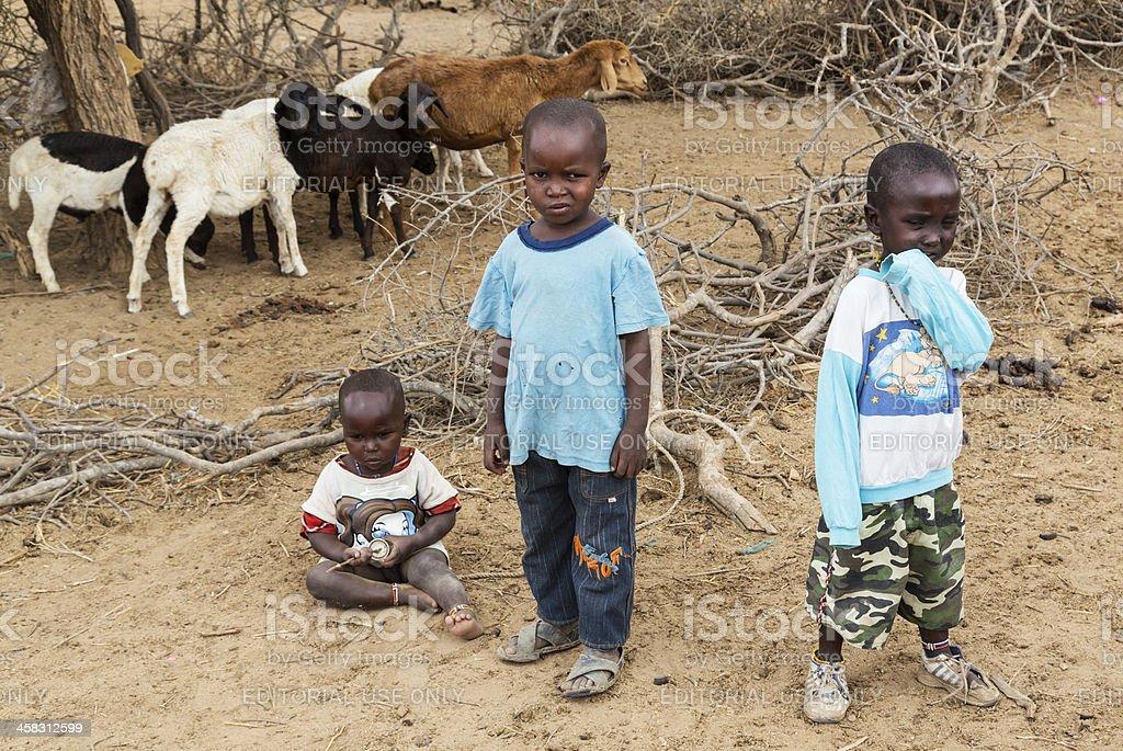 Three children and goats in Maasai village. stock photo