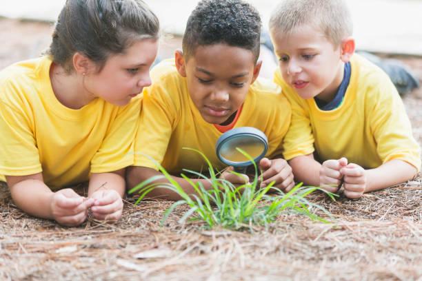 Three children exploring nature with magnifying glass stock photo