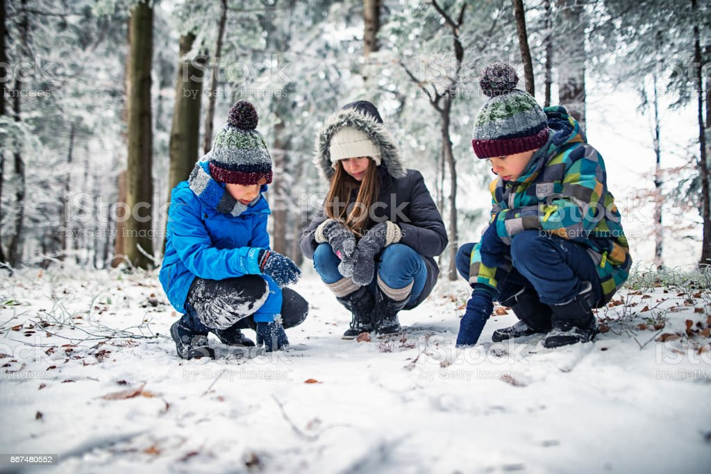 Three children observing tracks on snow in winter forest stock photo