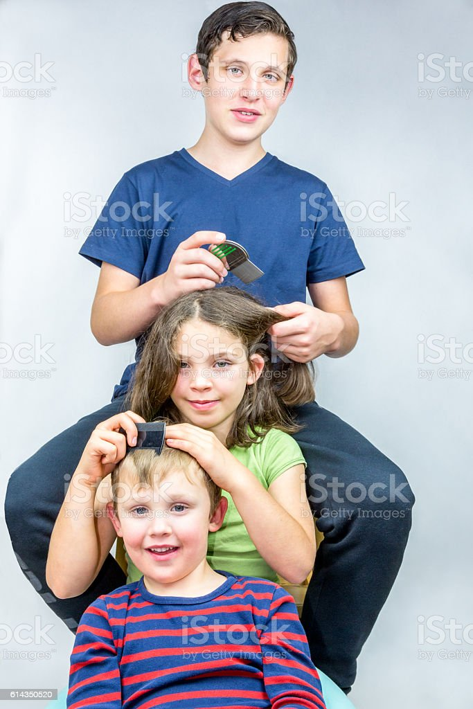 Three children who comb each others head. stock photo