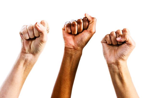 Three clenched female fists triumphantly supporting women's rights Three clenched female fists are raised in defiance or triumph by supporters or defenders of women's rights. Isolated on white.  women's rights stock pictures, royalty-free photos & images